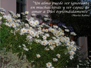 frases de Marta-flores 10