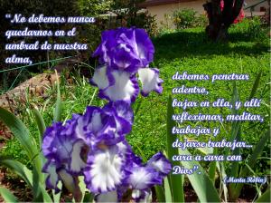frases de Marta-flores 6