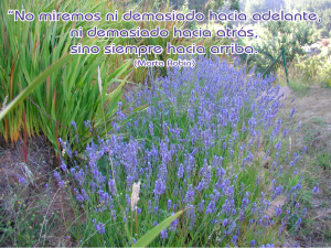 frases de Marta-flores 8