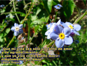 frases de Marta-flores 9